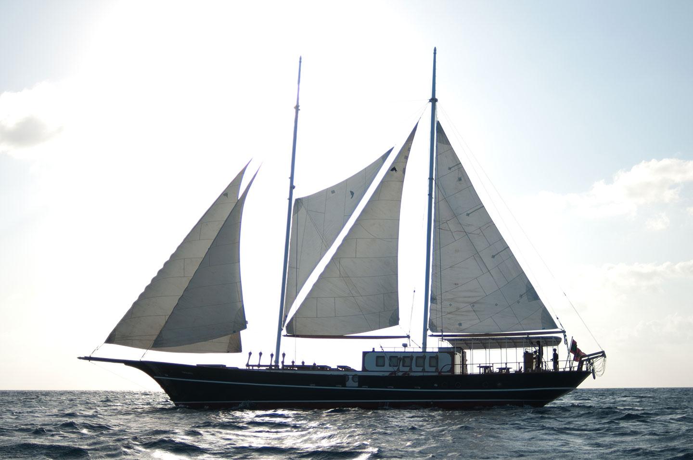 Sailing Dream Voyager