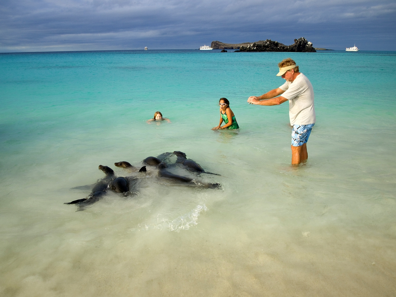 Galapagos Sea Star Journey Guests Children Getting Close To Playful Seals