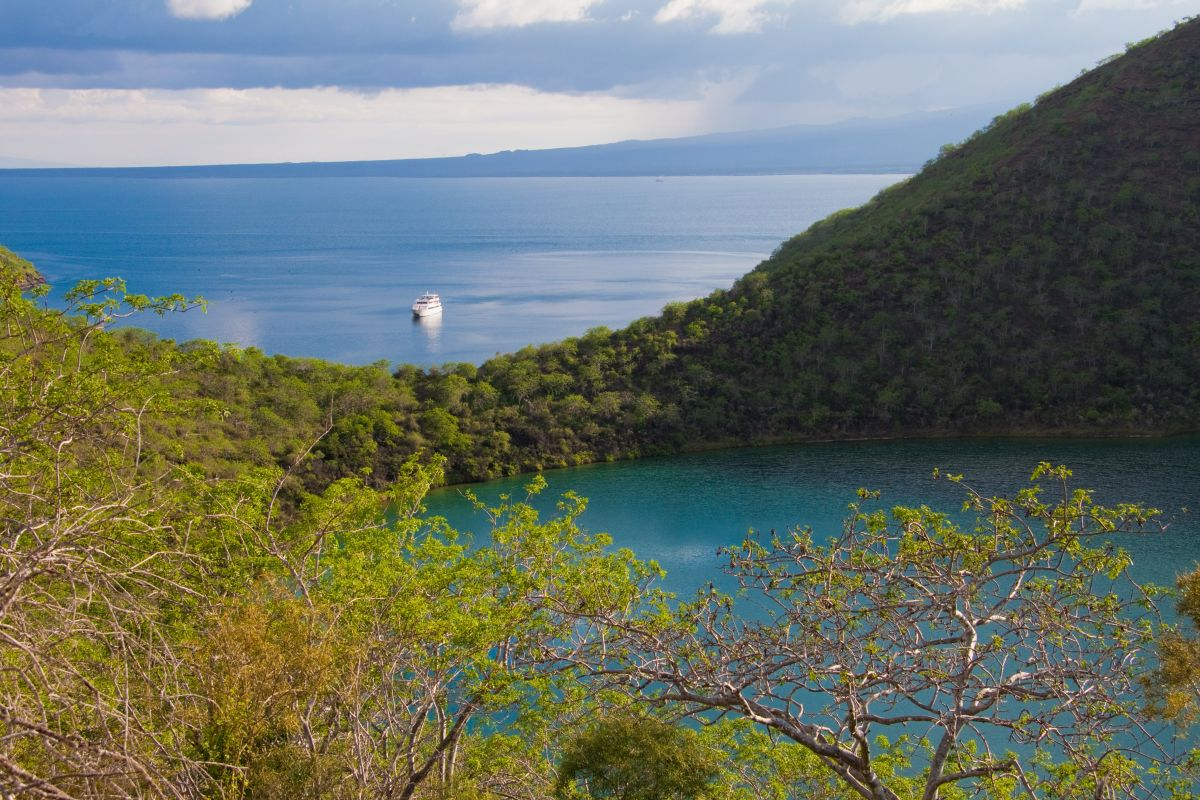 MY Galapagos Grand Odyssey Ecuador