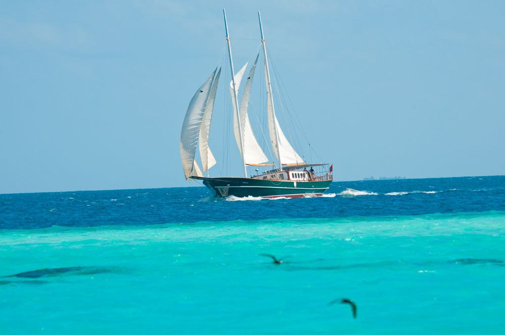 DREAM VOYAGER -  On Charter