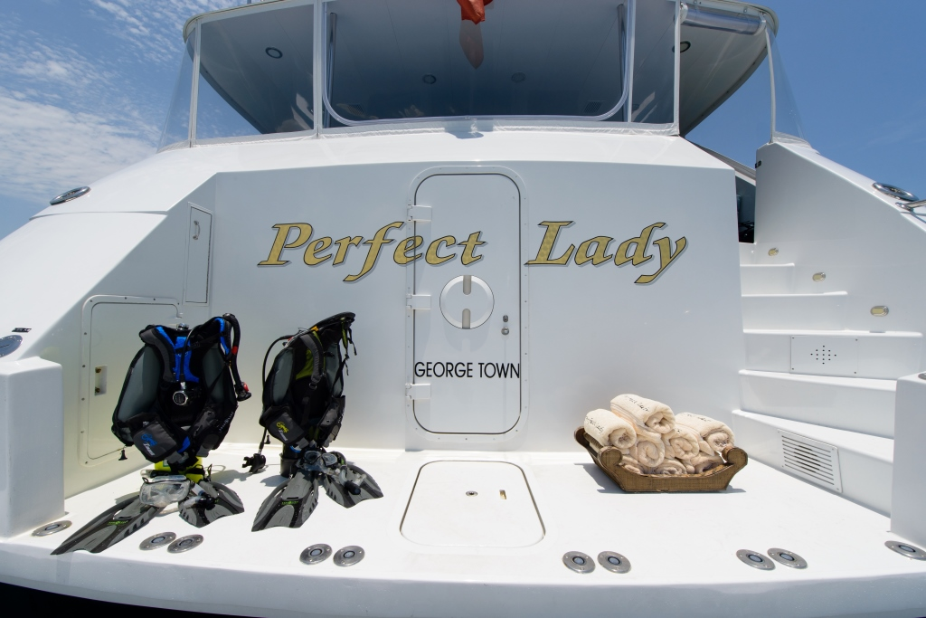 Motor yacht PERFECT LADY - Swim Platform