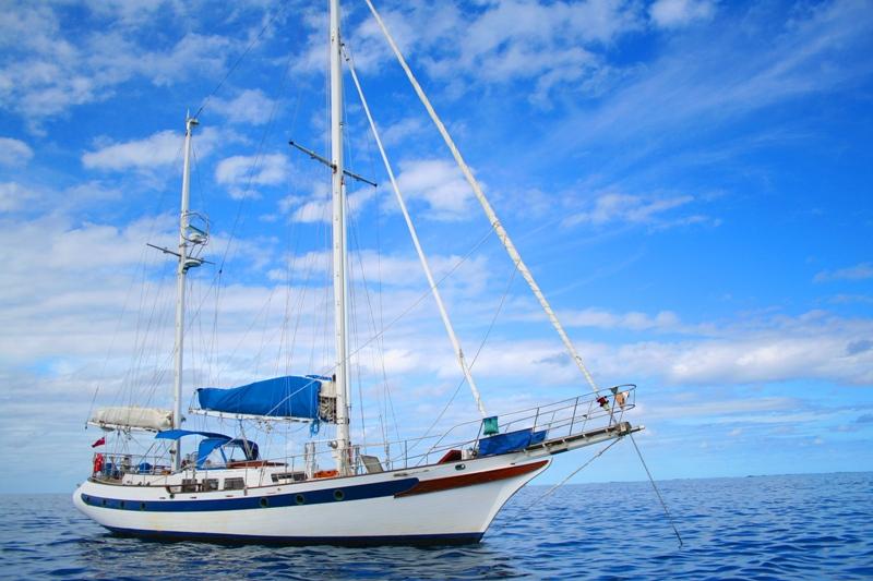 SEASTAR At anchor