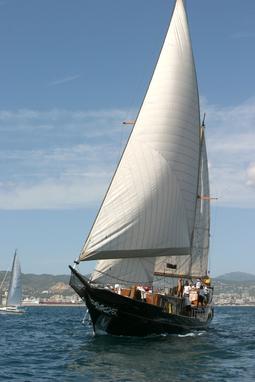 Sail Yacht DOLPHIN - Sailing
