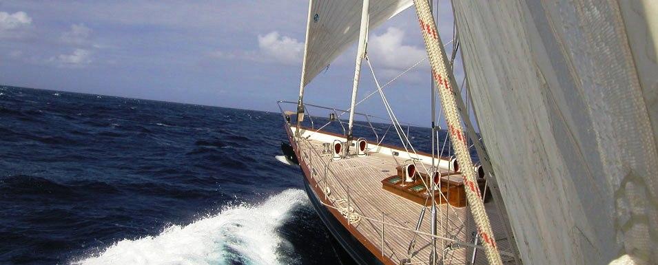 Shamoun-deck
