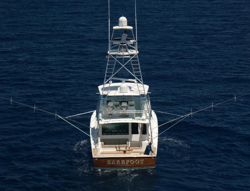 Barefoot yacht charter details viking convertible sport for Viking fishing boat
