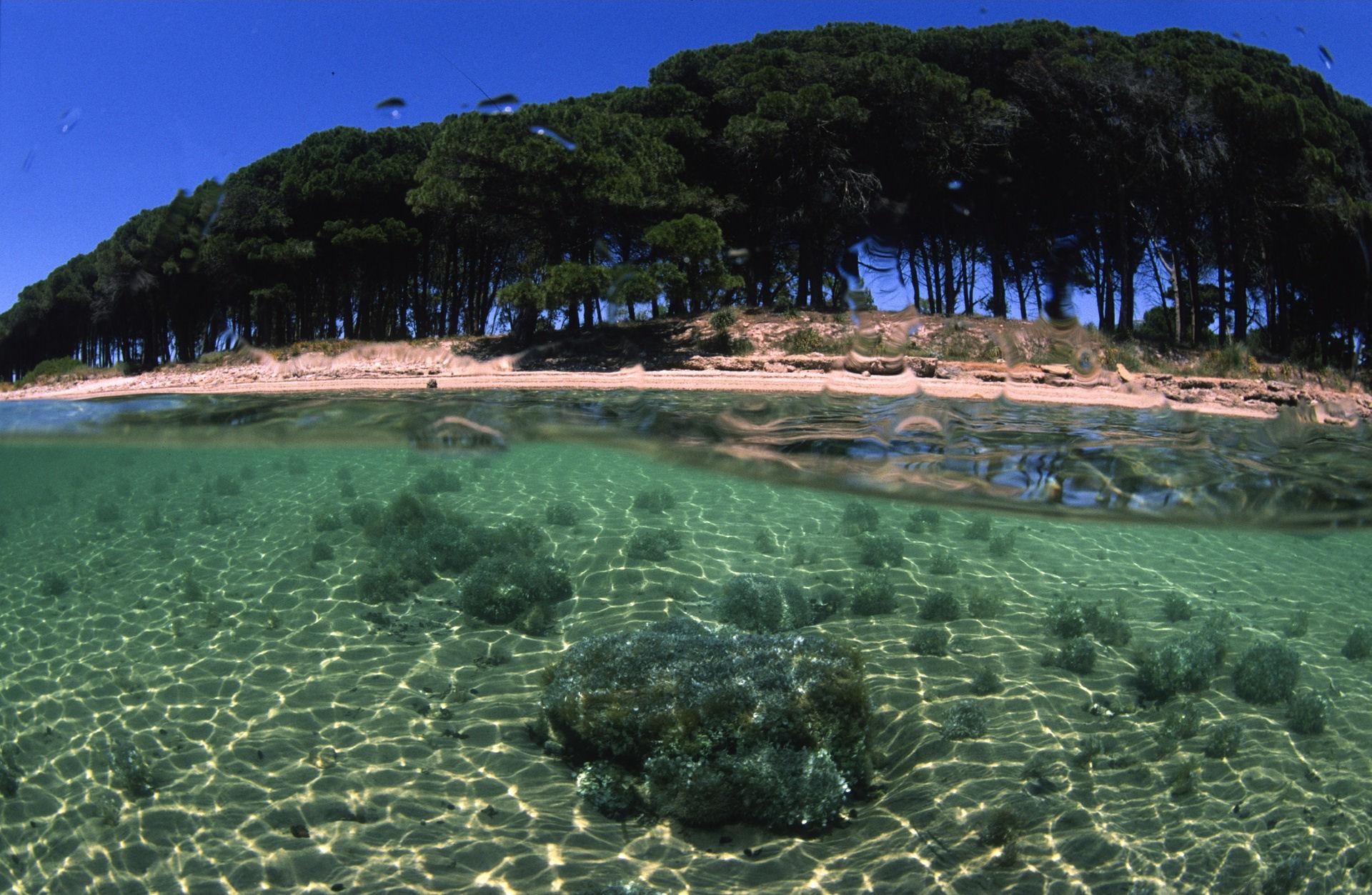Sardinia yacht charters