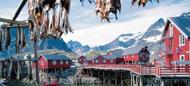 Stockfish - Norway