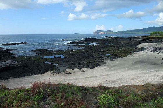 The magical South American yacht charter destination - the Galapagos Islands