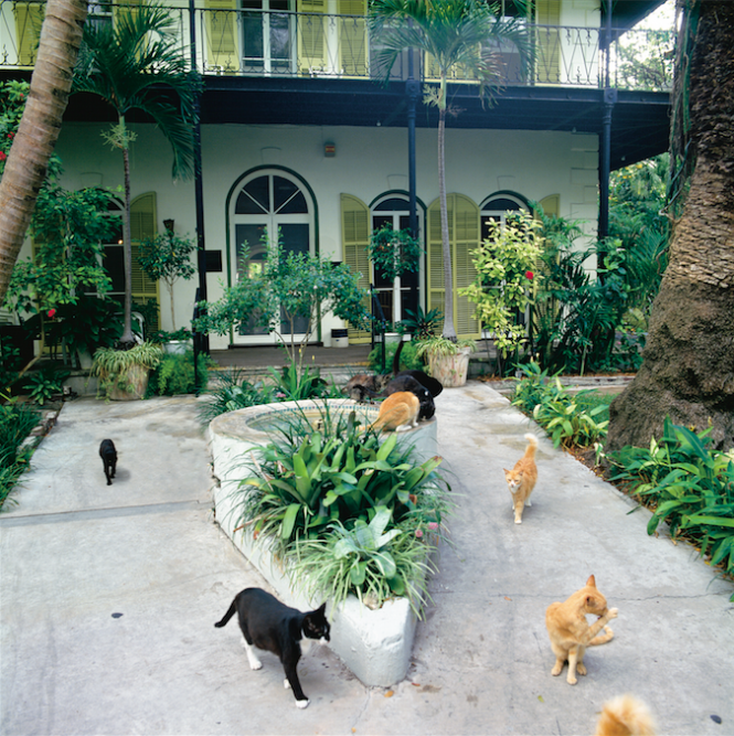 Hemmingway Home and Museum - Image credit to VISIT FLORIDA