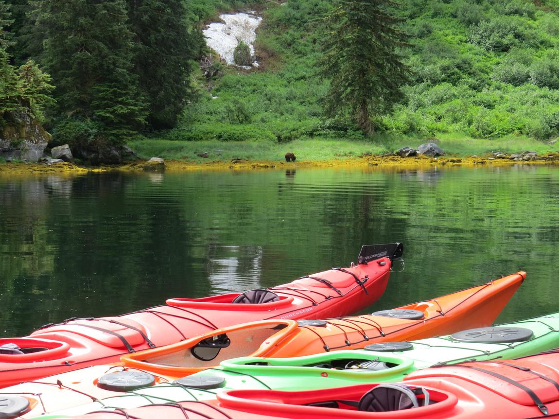 Kayaking in Alaska - Image credit to Viaggio Charters