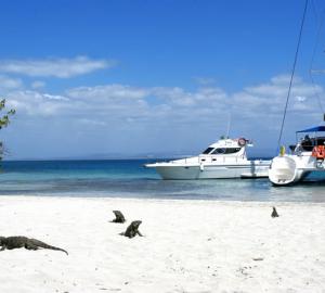 Bright Future for Cuba Yacht Charter