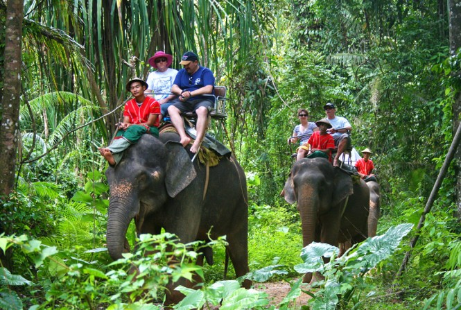 Elephant tours in Koh Samui - Photo credit to Asia Pacific Superyachts Koh Samui