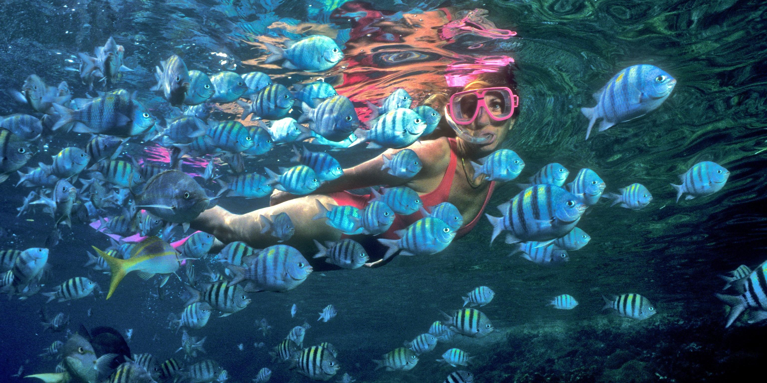 Best Snorkeling Beach Tortola