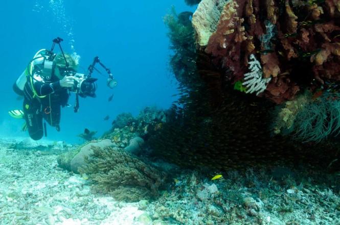Lamima - Diving