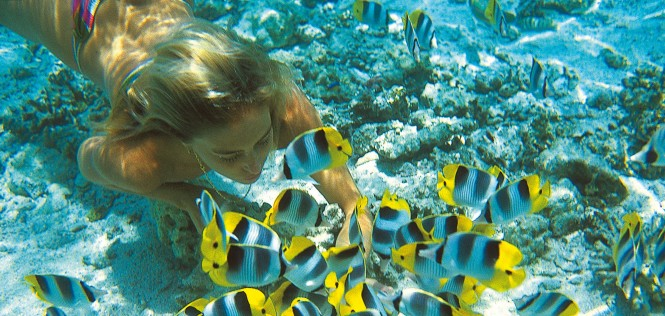 Swimming with the fish in French Polynesia