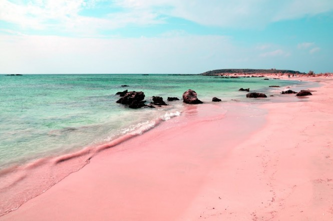 Pink sands beach on Harbour Island