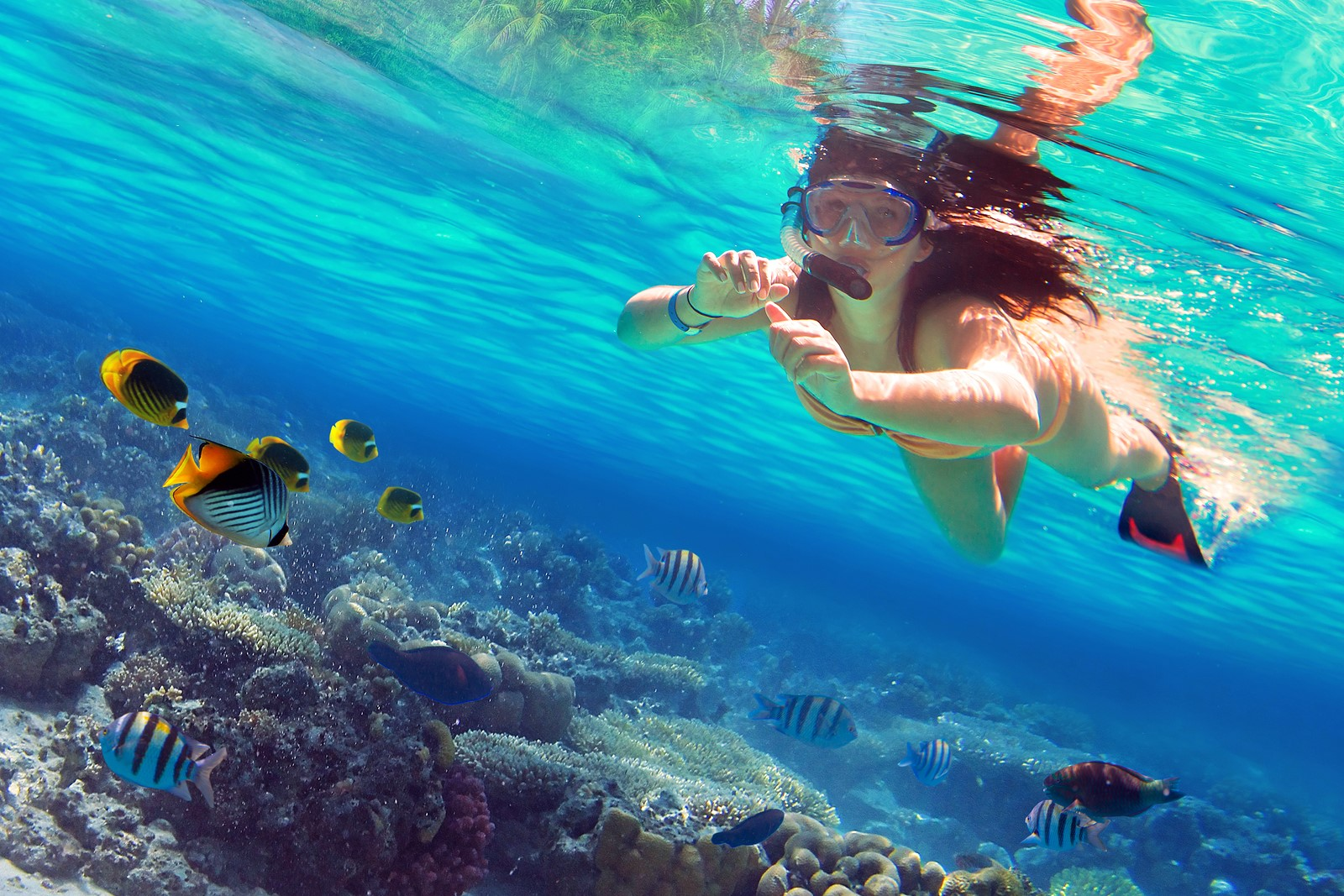 Beautiful women snorkeling in the tropical sea — Yacht Charter & Superyacht News