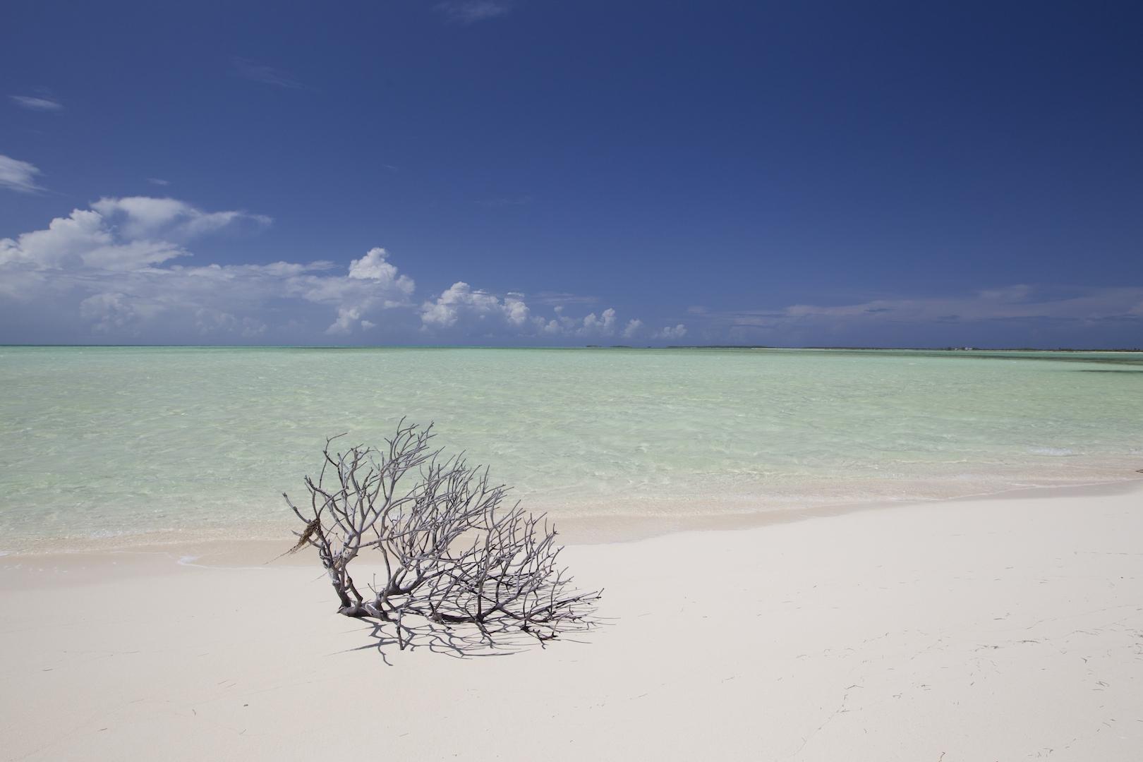 ACKL Sand Bar ©Bahamas Ministry of Tourism