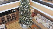 Christmas aboard AXIOMA