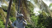 Pirates of the Caribbean location great visit on a family yacht charter