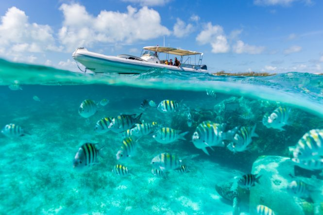 Amazing adventures throughout your entire charter vacation in the Bahamas