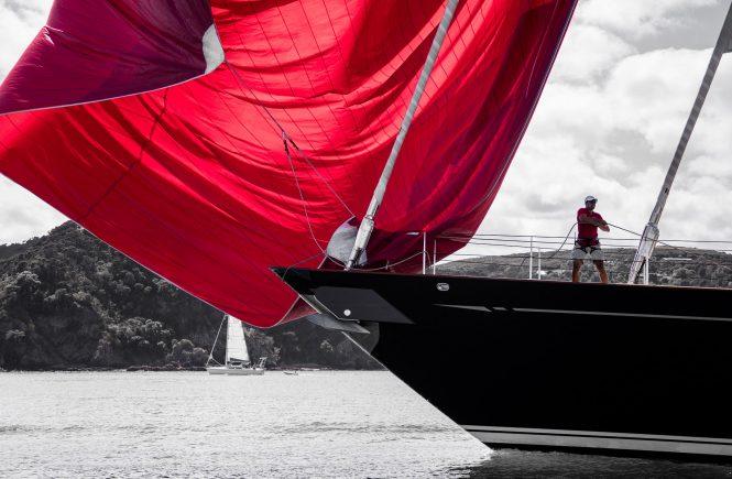 Thalia brings in the kite