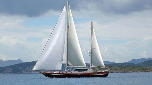Dragonfly sailing yacht