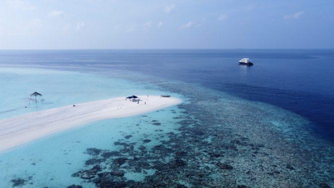 Safira in Maldives