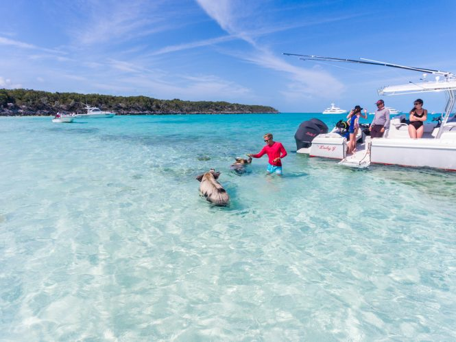 Swimming with the pigs in the Bahamas - Lady J yacht © Quin BISSET
